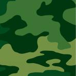 Camouflage Beverage Napkins 25cm - 12 PKG/16