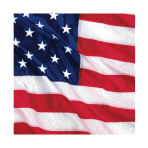 USA Flying Colours Luncheon Napkins - 12 PKG/16