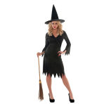 Adults Wicked Witch Costume - Plus Size - 1 PC