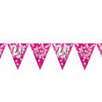 Happy 21st Birthday Flag Banners 4m - 10 PC