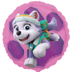 Paw Patrol Pink Skye & Everest Standard Foil Balloons S60 - 5 PC