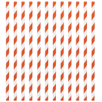 Orange Peel Paper Straws 19cm - 12 PKG/24