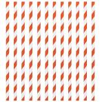 Orange Peel Paper Straws 19cm - 12 PKG/24