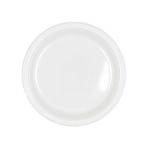 Frosty White Plastic Plates 18cm - 10 PKG/10