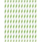 Kiwi Green Paper Straws 19cm - 12 PKG/24