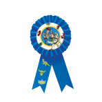 Toy Story Award Ribbons 15.2cm - 6 PC