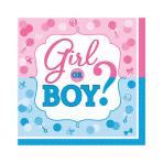 Girl or Boy Luncheon Napkins 33cm - 12 PKG/16