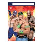 WWE Plastic Party/Loot Bags - 6 PKG/8