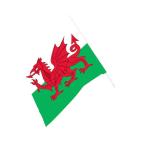 Wales Waving Flag  - 90cm x 60cm 6 PKG