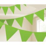 Kiwi Green Paper Pennant Banners 4.5m - 6 PC