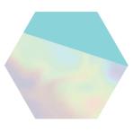 Shimmering Party Hexagonal Iridescent Paper Plates 23cm - 6 PKG/8