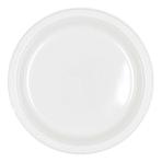 Frosty White Plastic Plates 23cm - 10 PKG/10