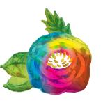 "Beautiful Flower Holographic Iridescent SuperShape Foil Balloons 30""/76cm x 29""/73cm P40 - 5 PC"