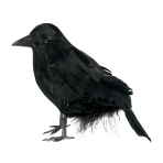 Small Feathered Raven 10.1cm - 18 PC