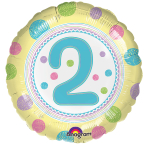 SpotOn 2nd Happy Birthday Standard Foil Balloons S40 - 5 PC