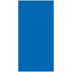 Royal Blue Paper Bag Packaged 24cm h x 13cm w - 12 PKG/12