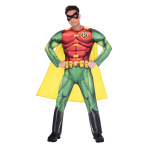 Robin Classic Costume - Size Large - 1 PC