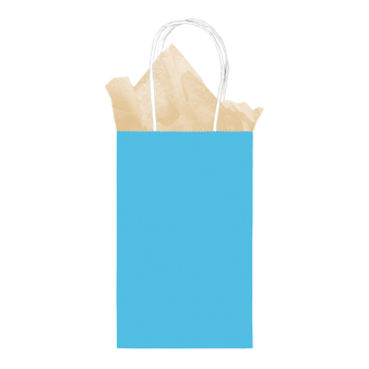 Details about Candy Buffet Caribbean Blue Small Paper Gift Bags with Handle x 12