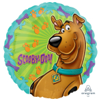 Scooby-Doo Standard Foil Balloons - S60 5 PC