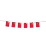 China Small Plastic Flag Bunting    - 3m 6 PKG