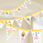 What Will It Bee? Pennant Banners 4.57m - 12 PC