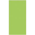 Kiwi Green Paper Bag Packaged 24cm h x 13cm w - 12 PKG/12