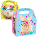 Favours Party Boxes Pet - 75 PC
