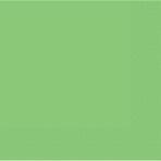 Kiwi Green Paper Dinner Napkins - 12 PKG/20