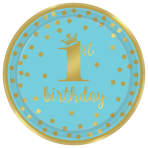 1st Birthday Boy Blue & Gold Metallic Paper Plates 23cm - 12 PKG/8