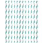 Robin's Egg Blue Paper Straws 19cm - 12 PKG/24