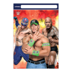 WWE Plastic Party/Loot Bags - 6 PKG/8