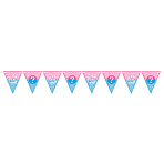 Girl or Boy Pennant Banners 4.5m - 12 PC