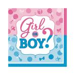 Girl or Boy Beverage Napkins 18cm - 12 PKG/16