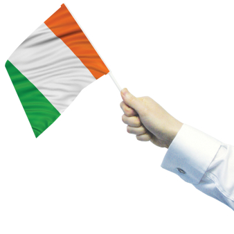 Ireland Waving Flags 30cm x 45cm - 6 PKG/4