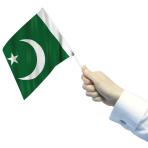 Pakistan Waving Flags  - 22cm w x 15cm h 6 PKG/12