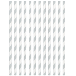 Silver Paper Straws 19cm - 12 PKG/24