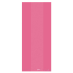 Pink Small Party Plastic Bag 24cm h x 10cm w - 12 PKG/25